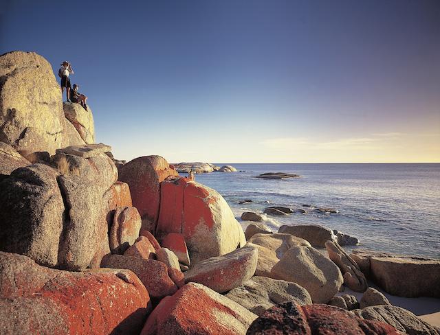 Tasmania Coast